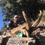 southeastern ibex hunt spain