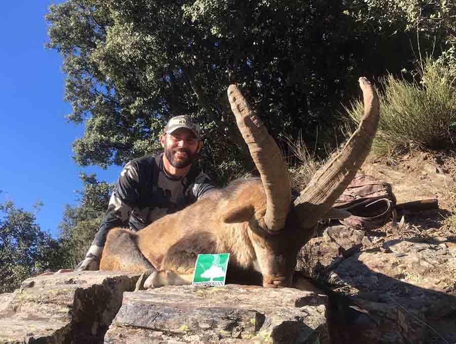 southeastern ibex hunt spain