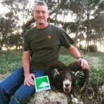 hunting spain mouflon cadiz andalucia andalusia
